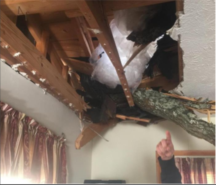 100 Ft. Oak Tree Falls on House Post Storm